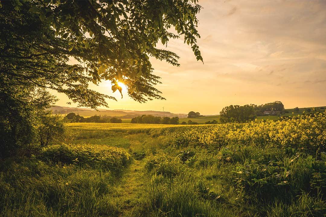 terre-d-eccezione-storia-paesaggio-tramonto