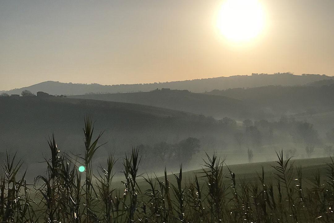 terre-d-eccezione-storia-paesaggio-colline-sole