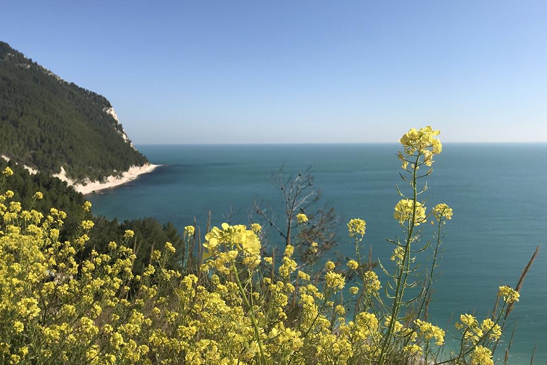 terre-d-eccezione-storia-paesaggio-mare